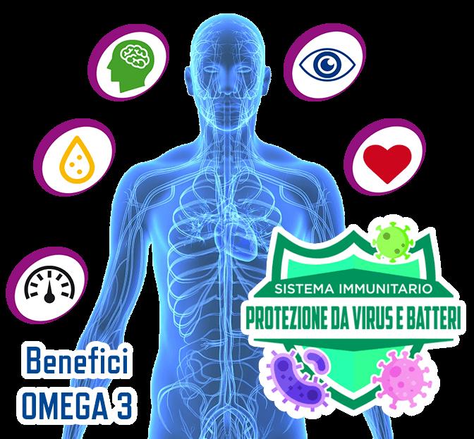 Omega 3 e Sistema Immunitario